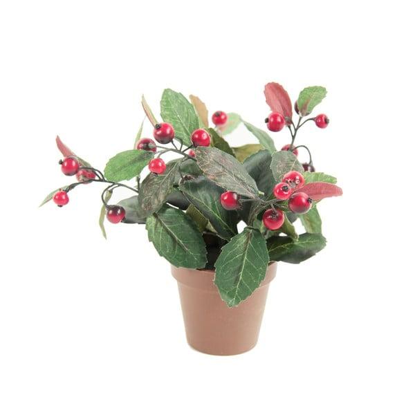 Umělá květina Gualtheria