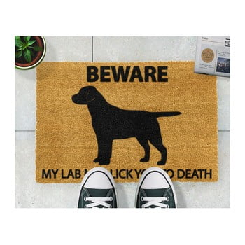 Covoraș intrare din fibre de cocos Artsy Doormats Labrador, 40 x 60 cm de la Artsy Doormats