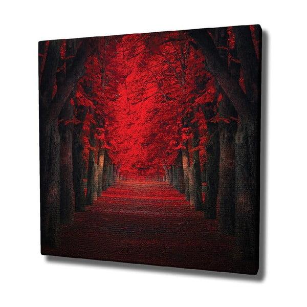 Red Trees vászon fali kép, 45 x 45 cm