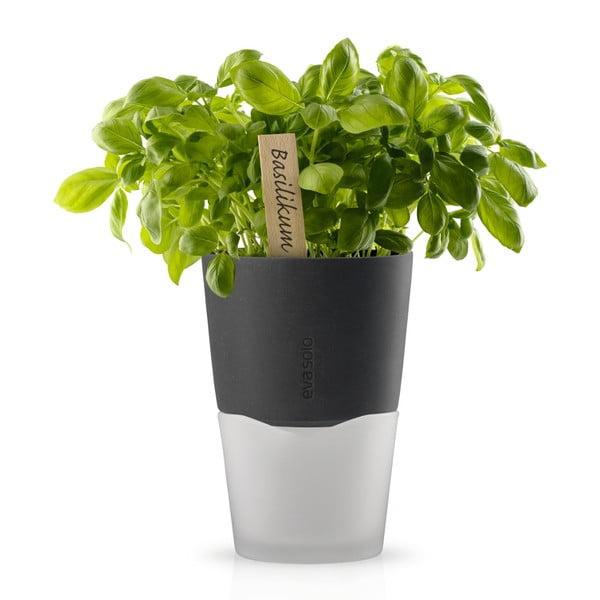 Samopodlévací květináč na bylinky Eva Solo Stone Grey, 13 cm