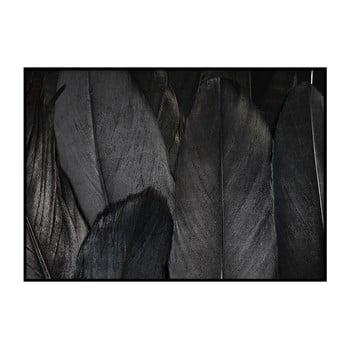 Poster DecoKing Feathers Black, 100 x 70 cm de la DecoKing