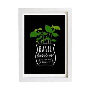 Plakát Basil Herb