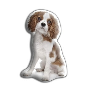 Pernă  Adorable Cushions Spaniel