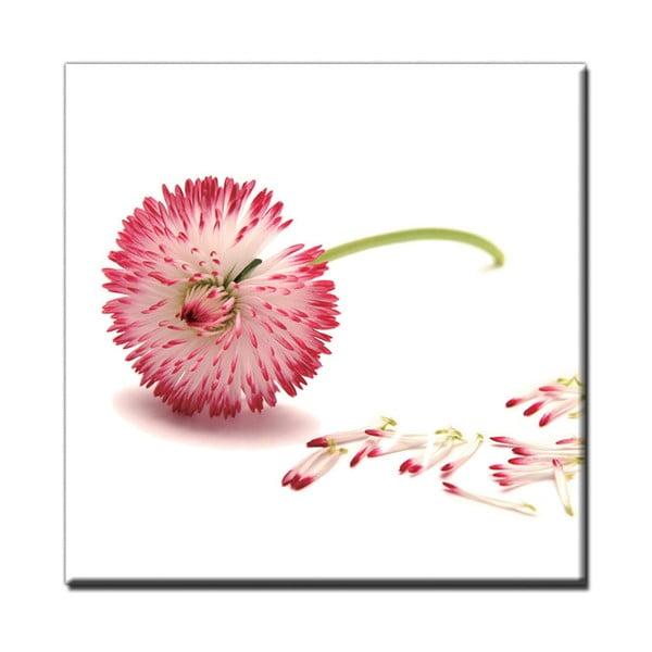 Obraz Pink Air, 60x60 cm