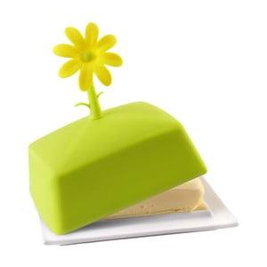 Zelená máslenka
