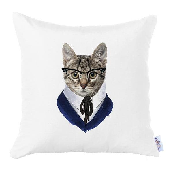 Faţă de pernă Apolena Business Cat, 43 x 43 cm