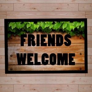 Rohožka Friends Welcome II, 40x60 cm