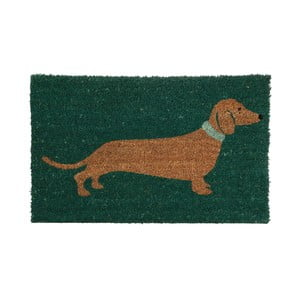 Zelená rohožka Premier Housewares Sausage Dog, 40x60 cm