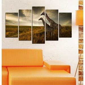 5dílný obraz Žirafy