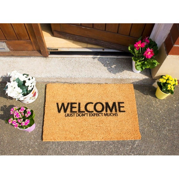 Rohožka Artsy Doormats Welcome Don't Expect Much,40x60cm