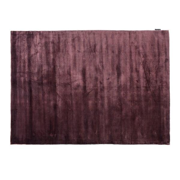 Koberec Lucens Purple, 200x300 cm