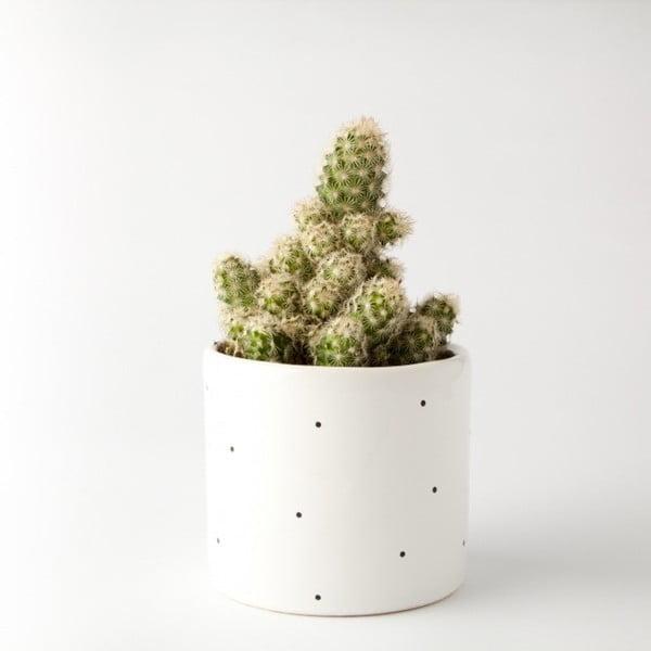 Ghiveci FOR.REST Design Dots,11cm
