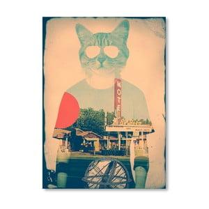 Autorský plakát The Cat