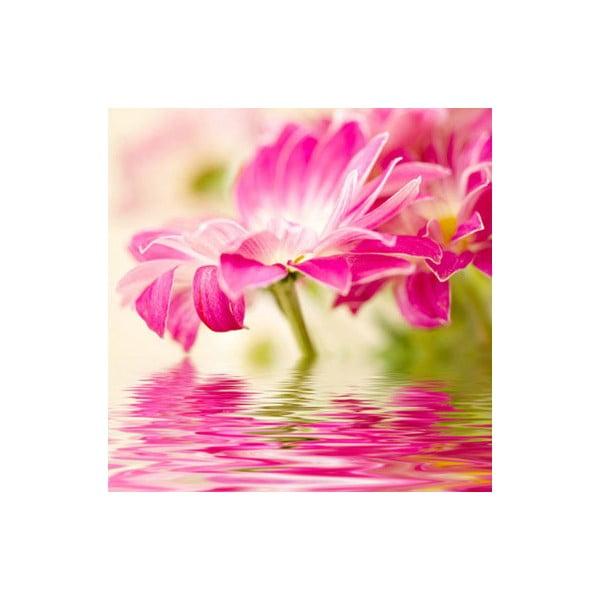 Obraz na skle Květina II, 30x30 cm