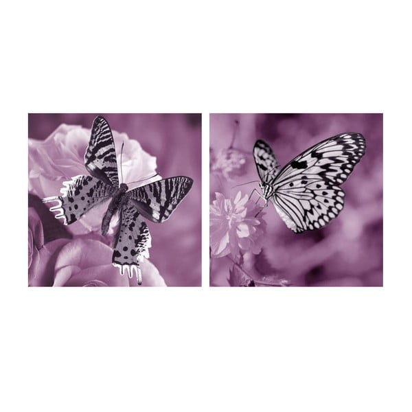 Set obrazů na skle Motýli, 30x30 cm, 2 ks