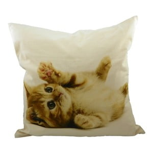 Polštář Mars&More Kitten, 50x50 cm