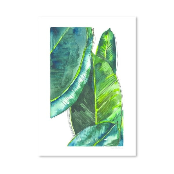 Plakát Banana Leaves, 30x42 cm