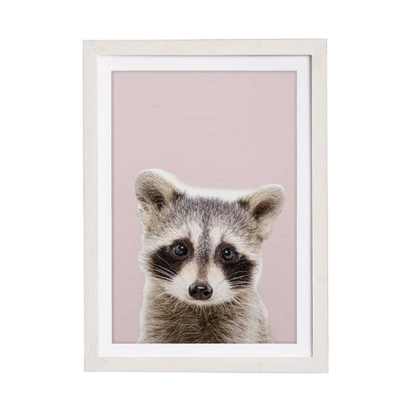 Baby Racoon keretezett falikép, 30 x 40 cm - Querido Bestiario