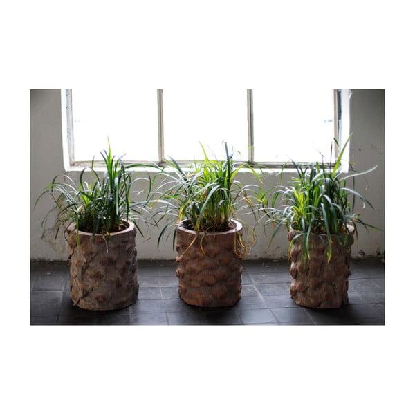 Palmový květináč Palm, 26 cm