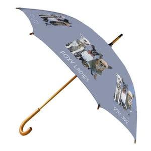 Deštník Chihuahua