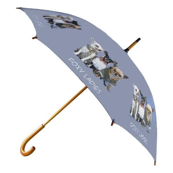Umbrelă Chihuahua