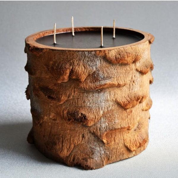 Palmová svíčka Legno Black Bee s vůní vodního květu, 120 hodin hoření