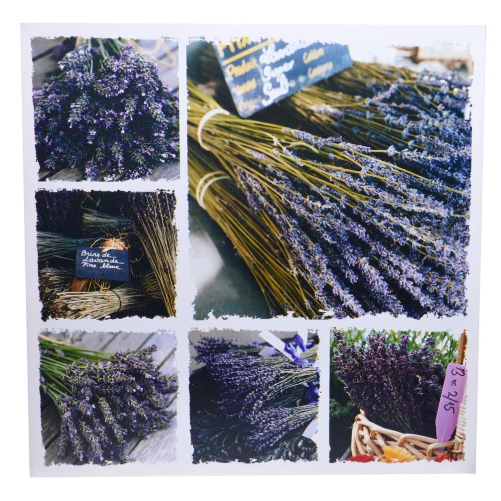Obraz Ewax Lavender Canvas, 60 x 60 cm