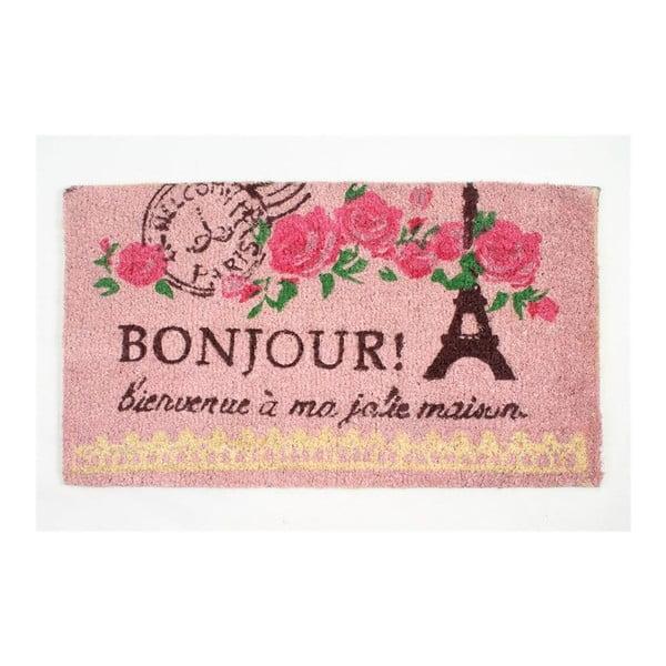 Rohožka Bonjour Paris, 40x70 cm