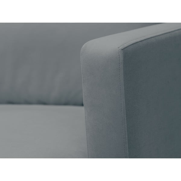 Šedá dvojmístná pohovka s podnožím v černé barvě Windsor & Co Sofas Jupiter