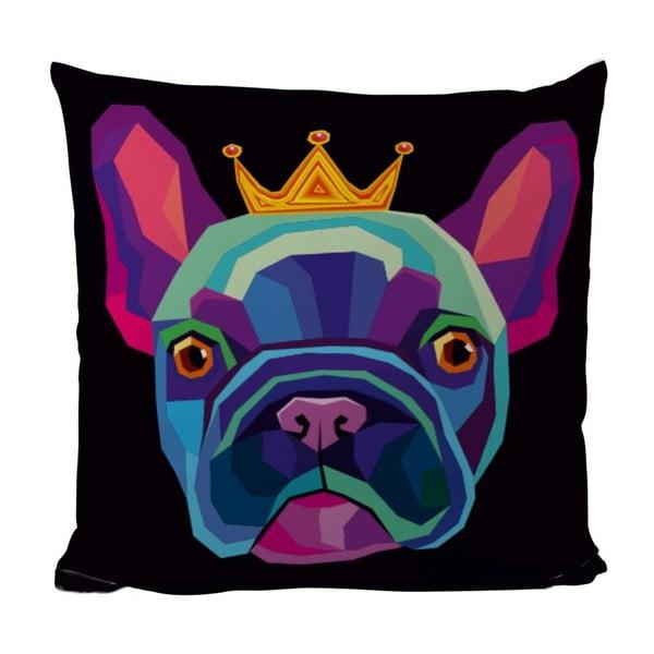 Polštář King Dog, 50x50 cm
