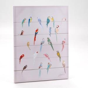Obraz na plátně Birds on Branch, 80x60 cm