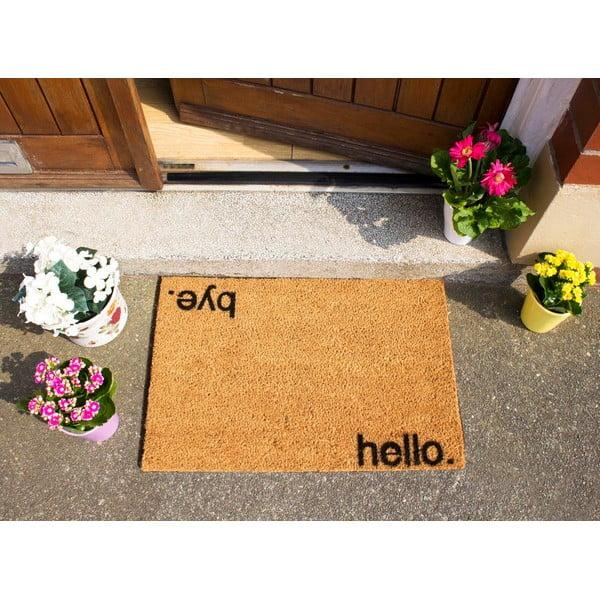 Rohožka Artsy Doormats Hello,Bye, 40x60cm
