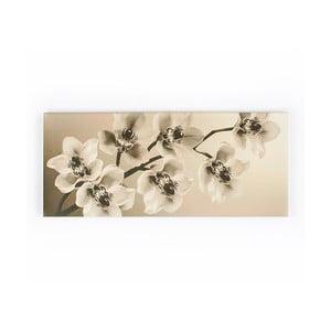 Tablou Graham & Brown Orchid Branch, 100 x 40 cm