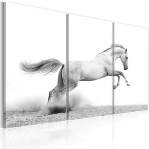 Vícedílný obraz na plátně Bimago Horse, 80x120cm