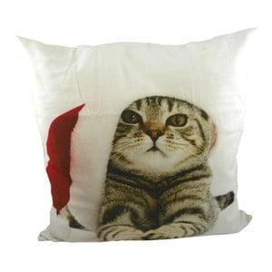 Polštář Christmas Cat 50x50 cm