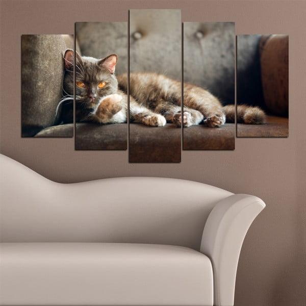 5dílný obraz Kočičí