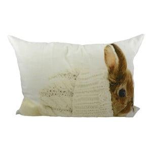 Polštář Rabbit in Hat 50x35 cm
