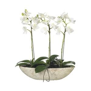 Umělé orchideje v květináči