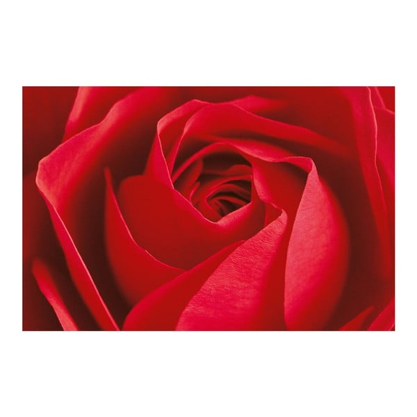 Maxi plakát La Rose, 175x115 cm