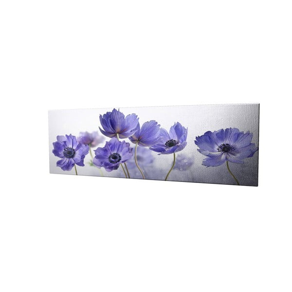 Obraz na plátně Violet, 80x30cm