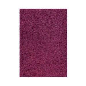 Koberec Super Shaggy 120x170 cm s 5 cm dlouhým vlasem, fialový