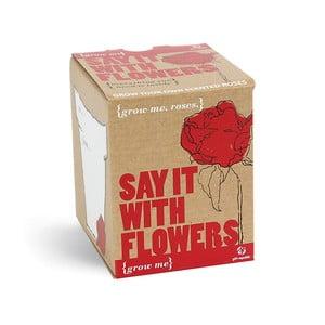 Pěstitelský set se semínky růže Gift Republic Say It With Flowers