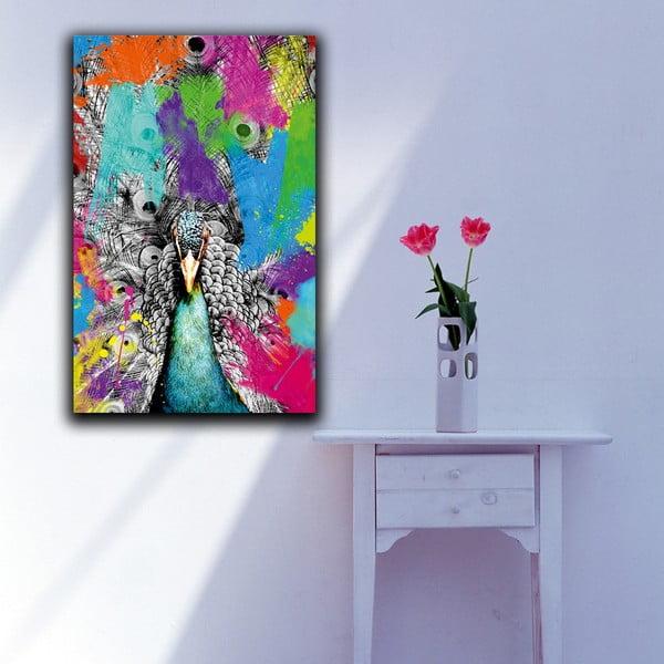 Obraz Proud Peacock, 45x70cm