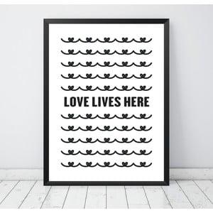 Plakát Nord & Co Love Lives Here, 40 x 50 cm