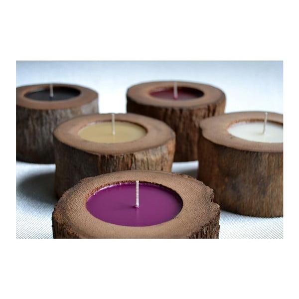 Palmová svíčka Legno Black Senses s vůní vodního květu, 80 hodin hoření