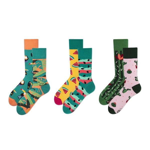 Sada 3 párů ponožek v dárkovém balení Many Mornings Vivid, vel.39–42