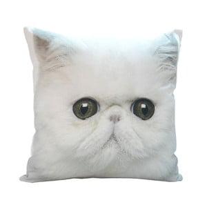 Polštář White Cat, 45x45 cm