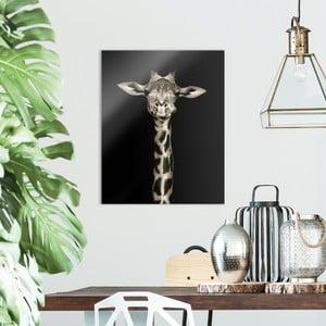 Skleněný obraz OrangeWallz Giraffe, 40 x 50 cm