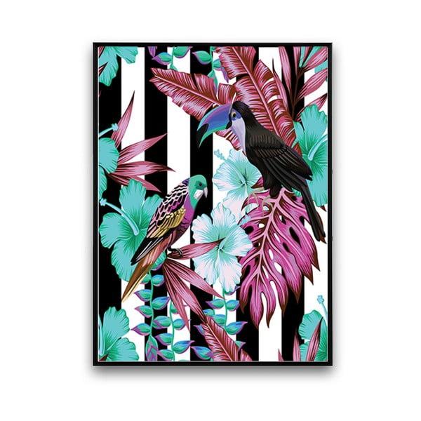 Plakát s papoušky, černo-bílé pozadí, 30 x 40 cm