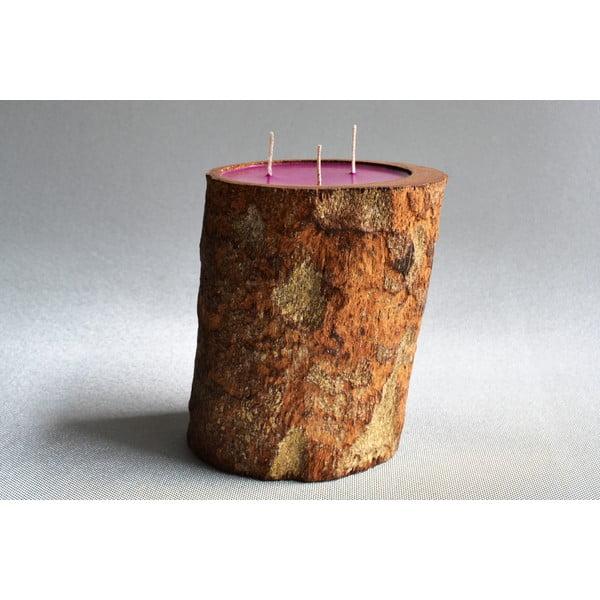 Palmová svíčka Legno s vůní white musk, 140 hodin hoření